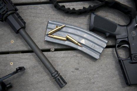 Minnesota gun rounds bullets July 2011