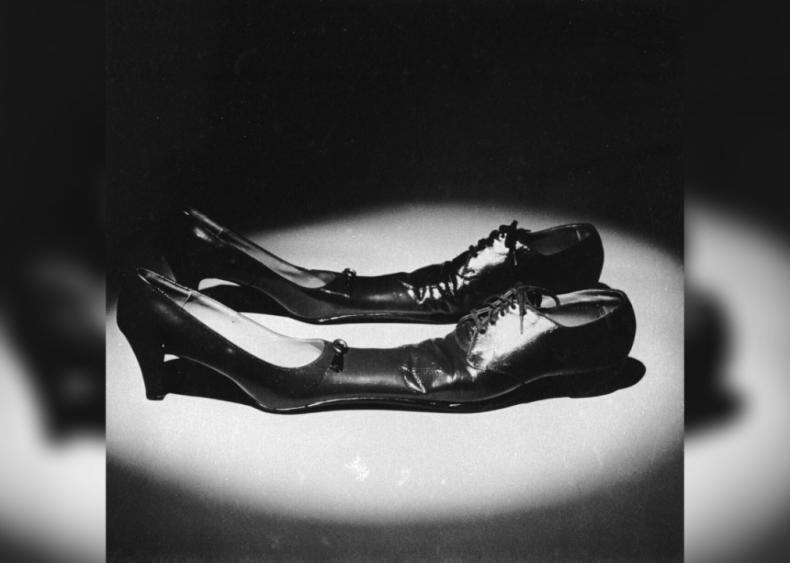 Siamese dancing shoes