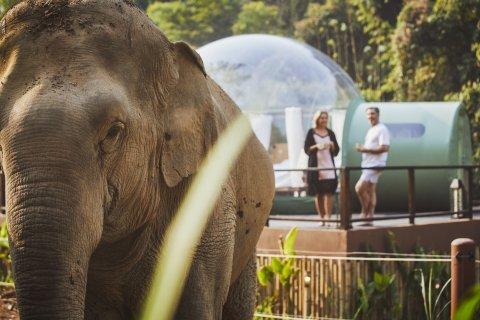 CUL_Map_Bubble Hotels_Jungle Bubbles at the Anantara