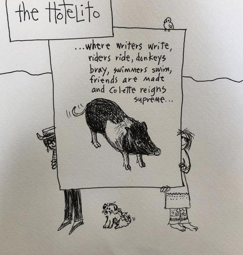 Colette the Pig Artwork