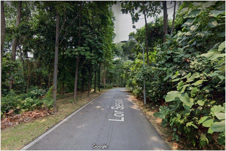 Lorong Sesuai suicide singapore