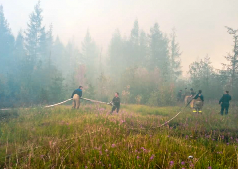 Siberian wildfires produce record carbon emissions