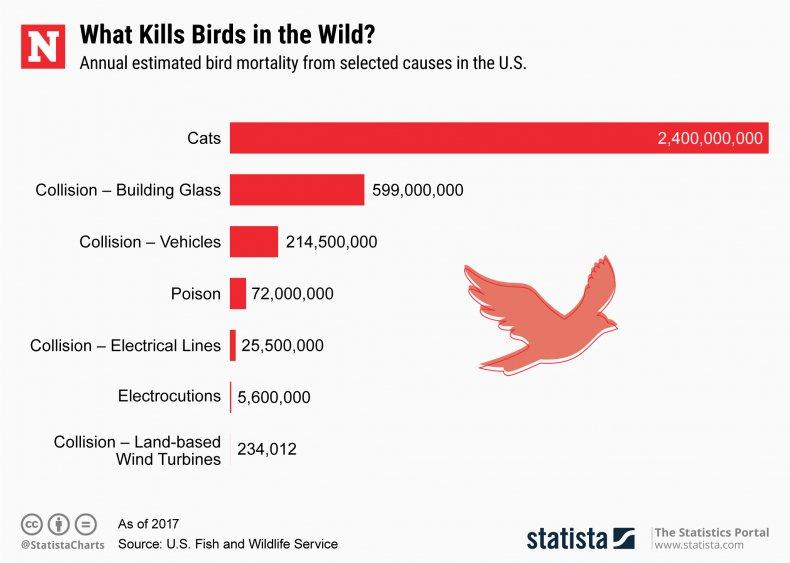 bird deaths, wind turbines, statistat