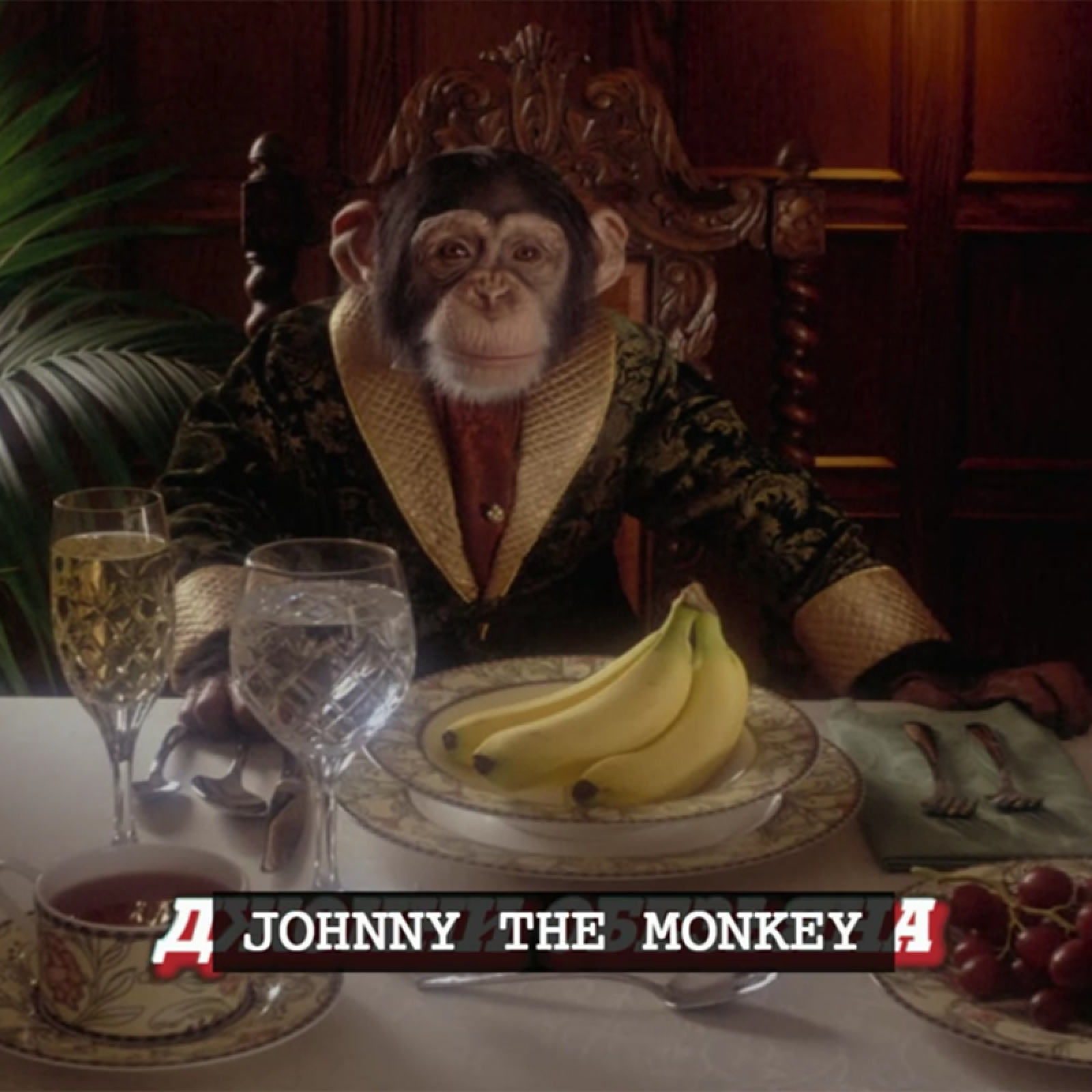 Borat 2' Star Johnny the Monkey Has a Hilarious Fake Website
