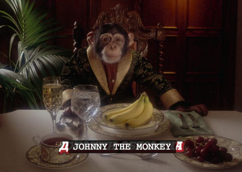 johnny the monkey