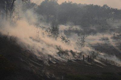 California wildfire wind