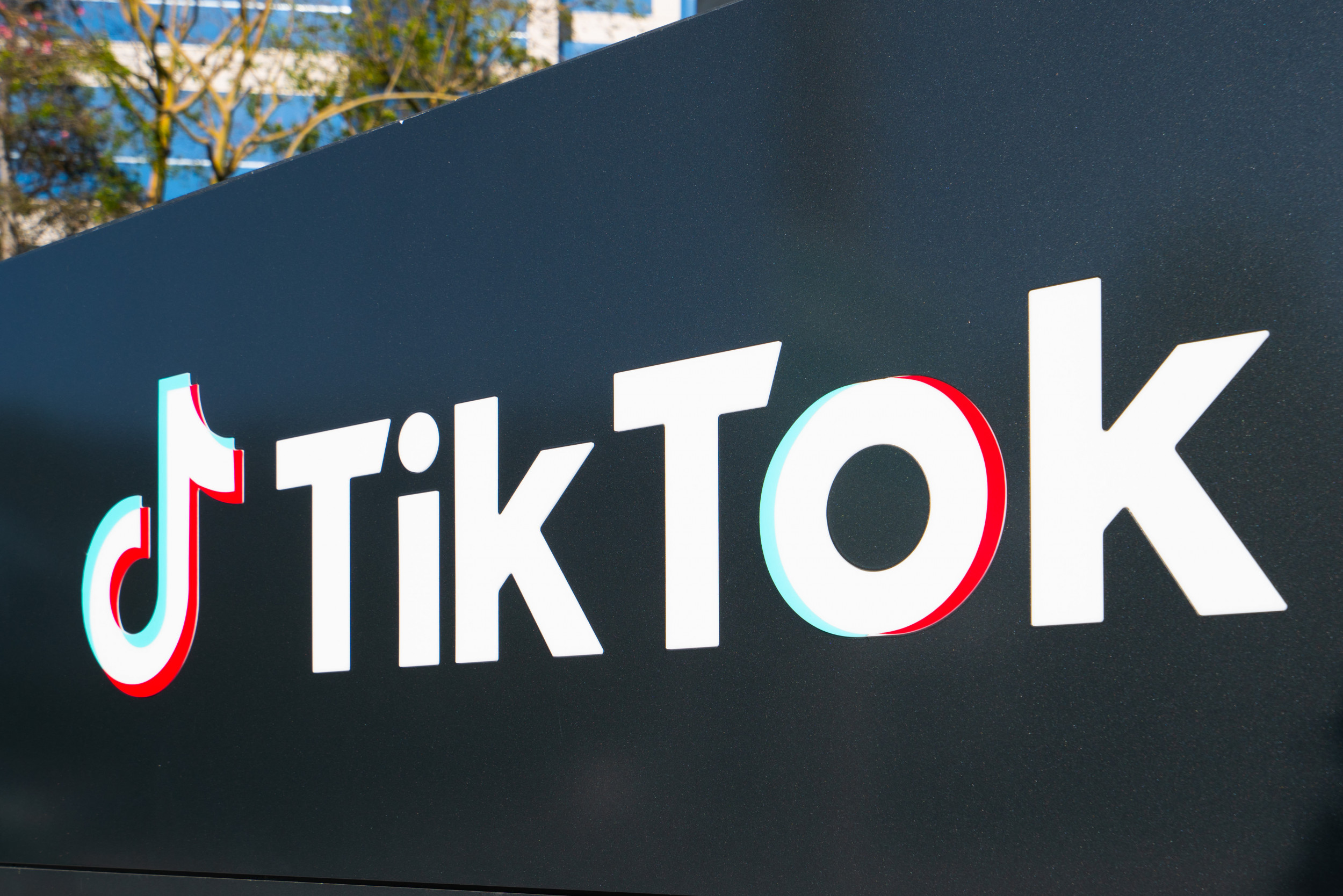 TikTok will limit spread of misleading content about election results while Facebook stays mum