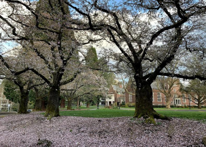 Oregon: Reed College