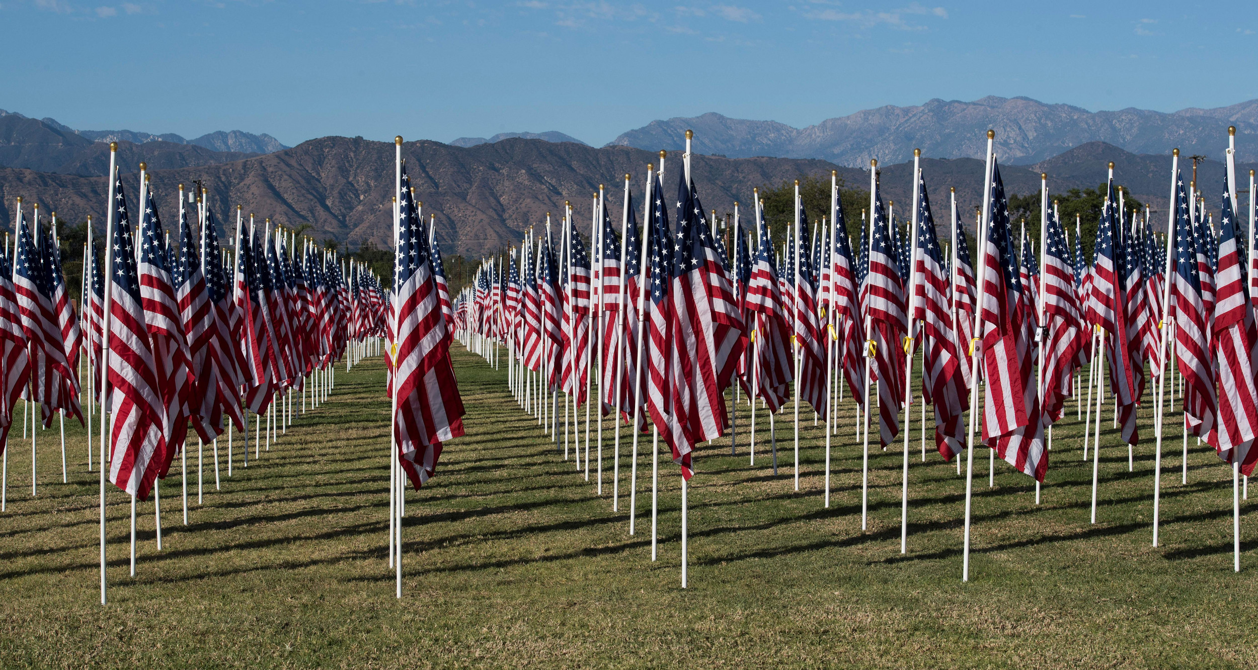 What's the Difference Between Veterans Day and Memorial Day?
