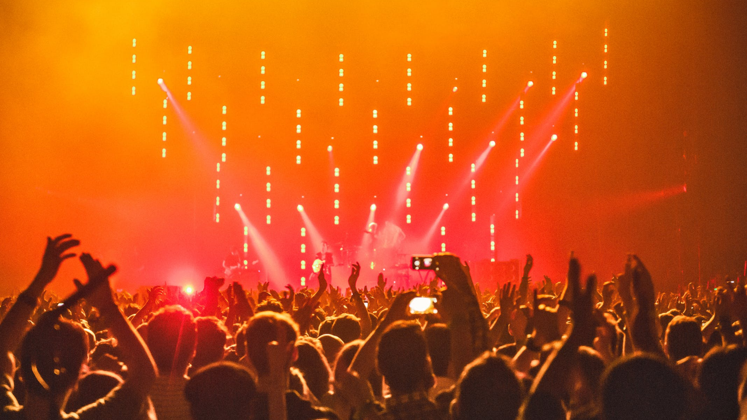 concert-fans