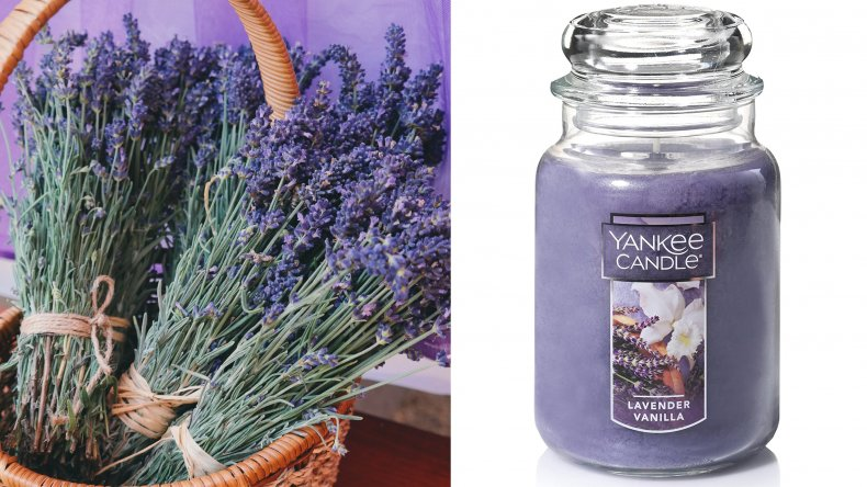 Yankee Candle Lavender Vanilla Scented Candles