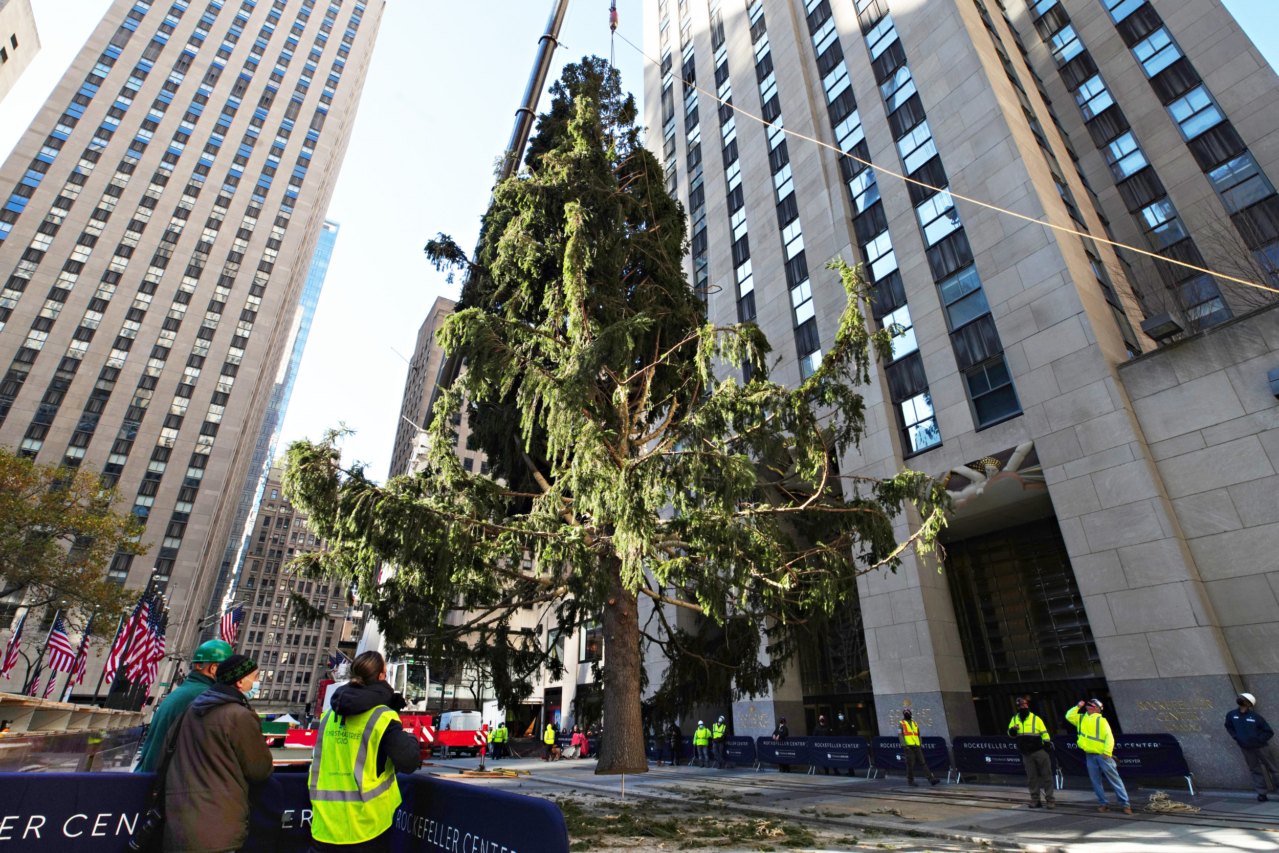 Here's who chose 2020's meme-worthy Rockefeller Christmas tree