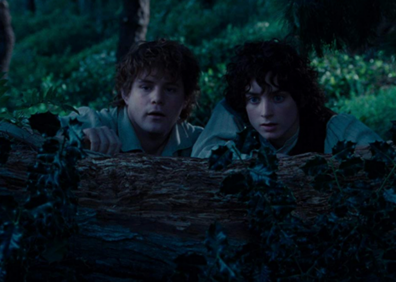 #51. The Lord of the Rings: The Fellowship of the Ring (2001) (tie)
