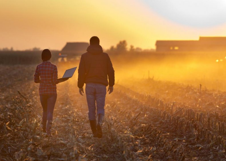 Small businesses account for 84% of employment in agriculture, forestry, fishing, and hunting