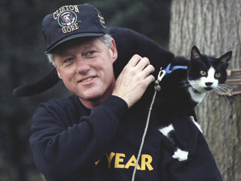 Clinton and cat