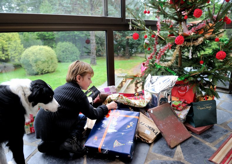 Christmas tree France boy with dog 2013
