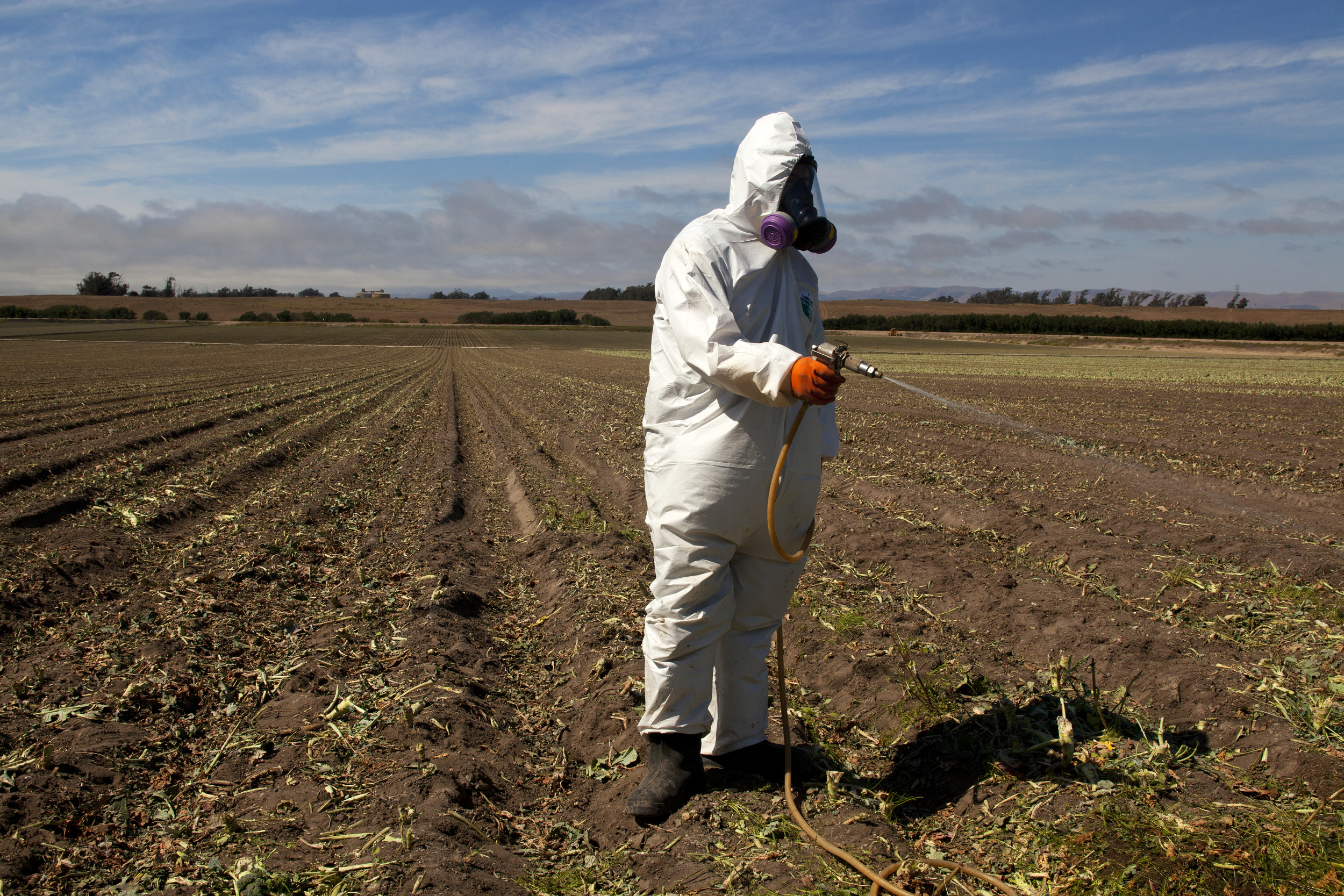 EPA OKs Pesticide Linked to Lower IQs, Memory Issues in Children thumbnail