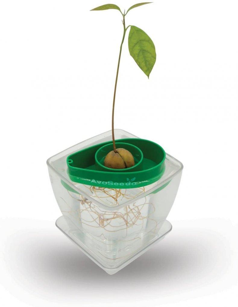 perfect white elephant gift desk avocado vase