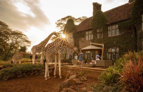 CUL_Map_Sleep_Giraffe Manor