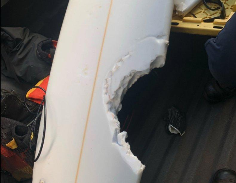 shark attack victim surfboard hawaii
