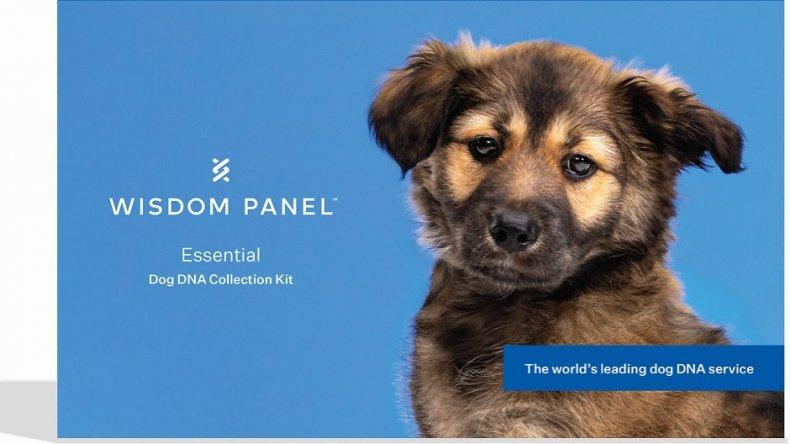 Dog DNA