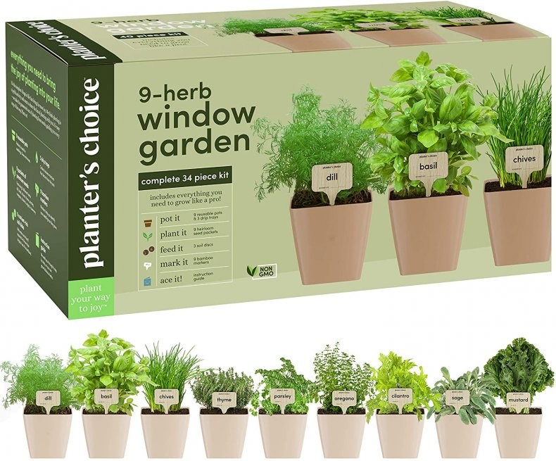 Most Wished for Amazon herb garden