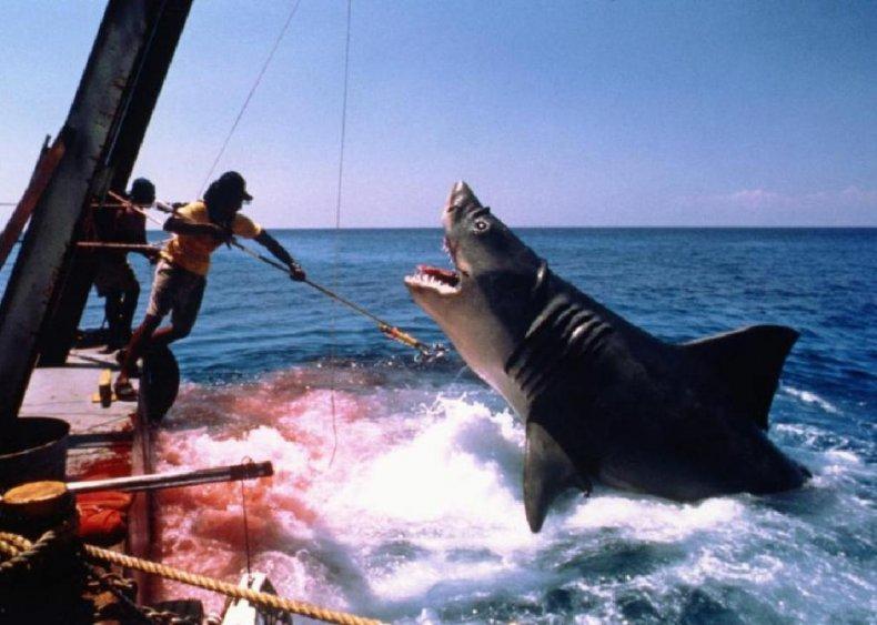 #32. Jaws: The Revenge (1987)