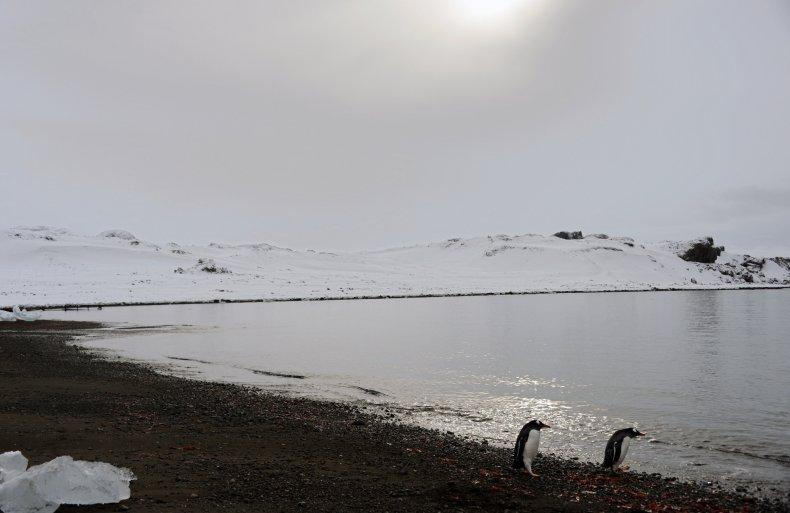 Antarctica COVID-19 Outbreak