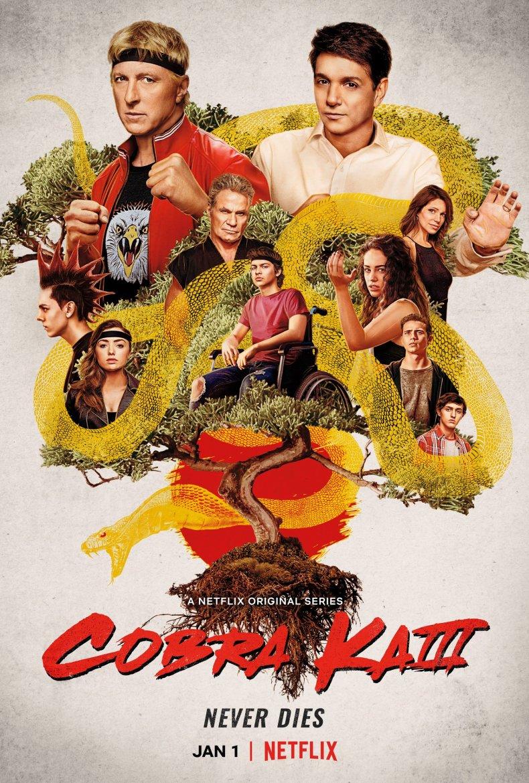 cobra kai season 3 poster netflix