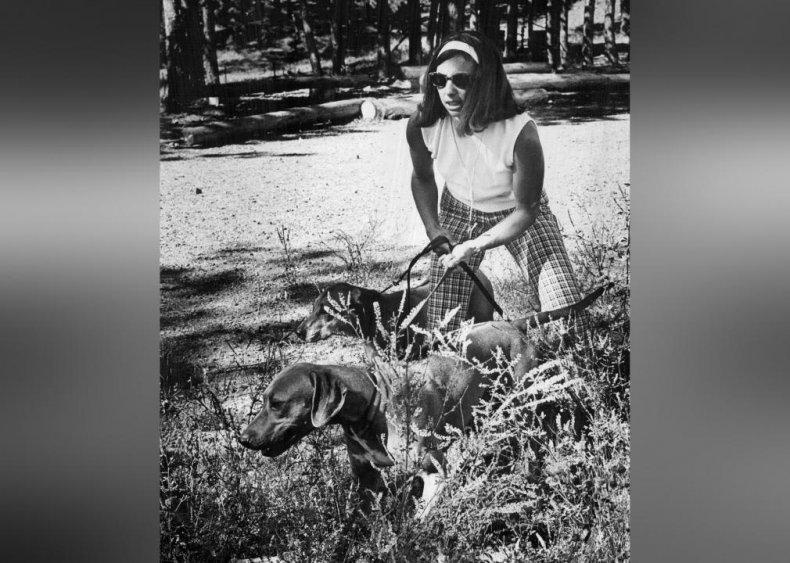 #42. Rhodesian Ridgeback