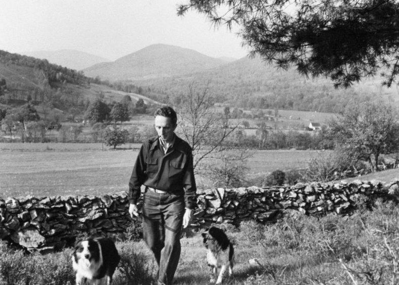 #13. Australian shepherd