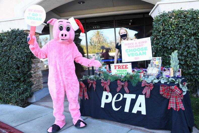 PETA Pig