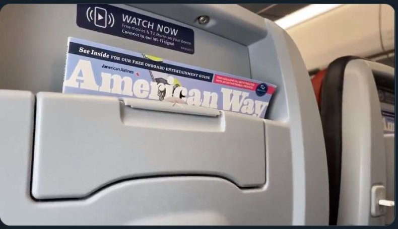 american airlines trump supporters pilot