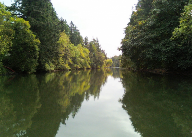 #98. Tualatin, Oregon