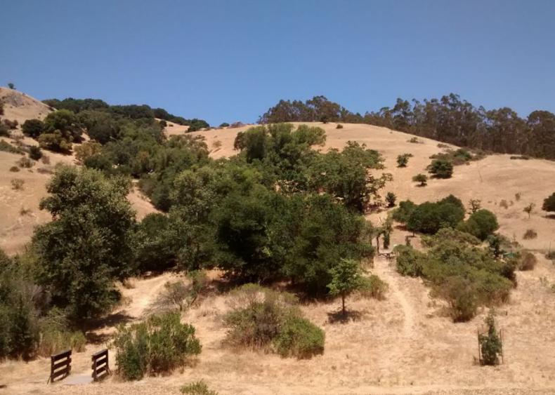 #47. San Anselmo, California