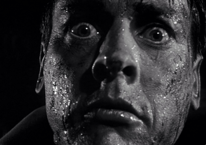#36. Invasion of the Body Snatchers (1978)