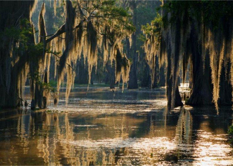 #23. Louisiana