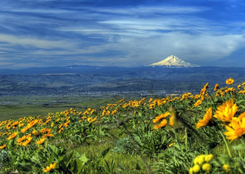 Clue: Oregon