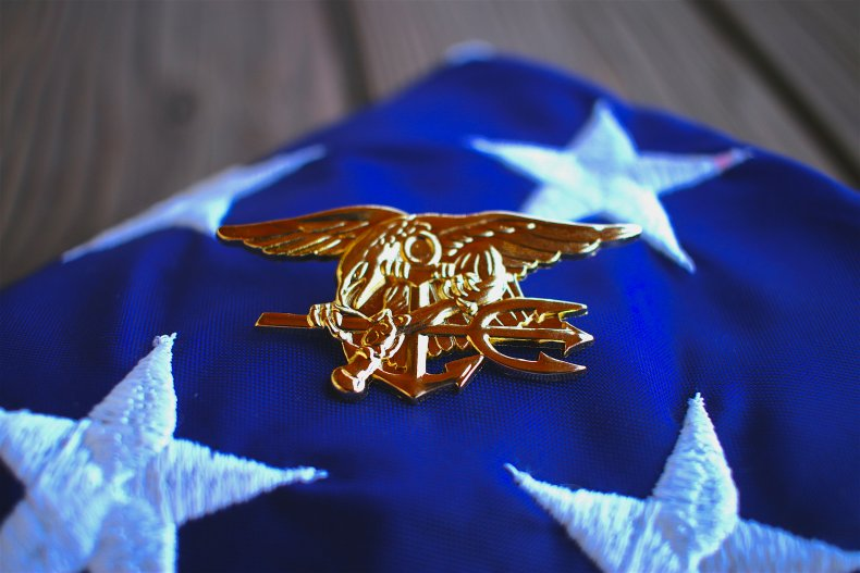 Navy SEAL Pleads Guilty Green Beret Death