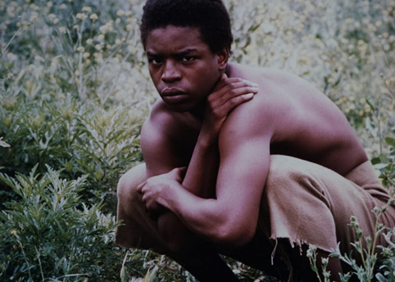 The country watches 'Roots'
