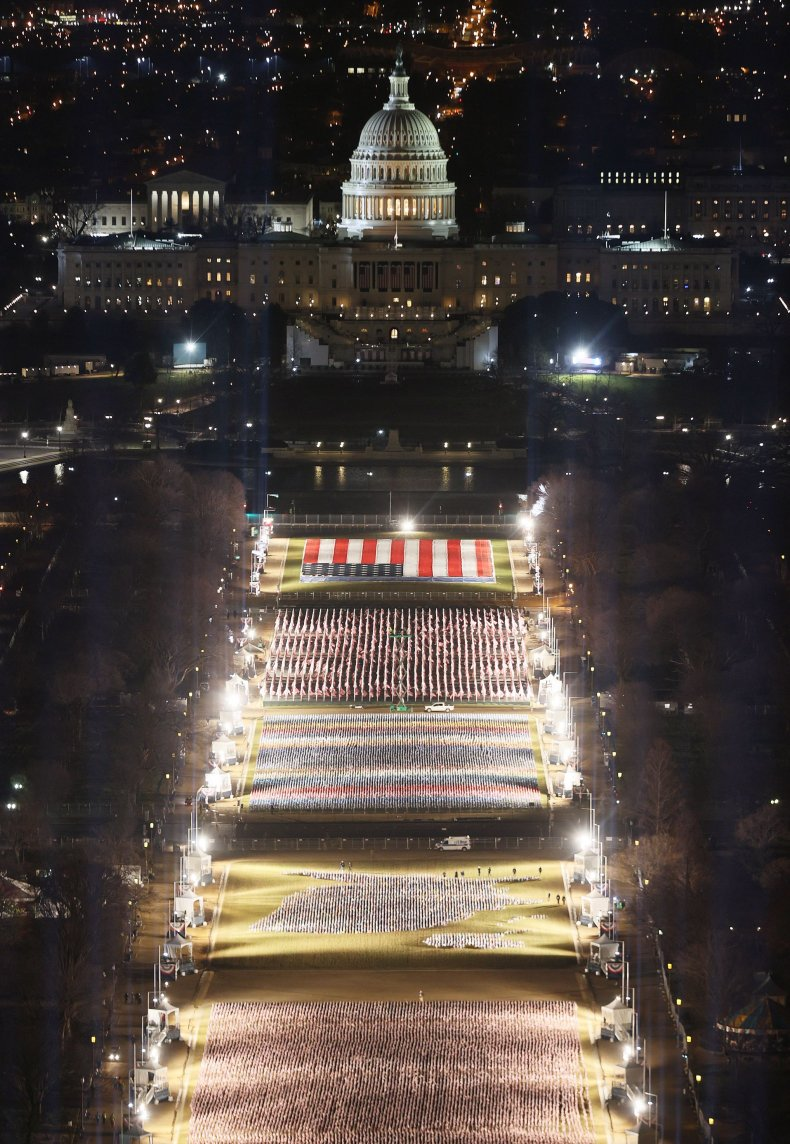 flags cover National Mall inauguration