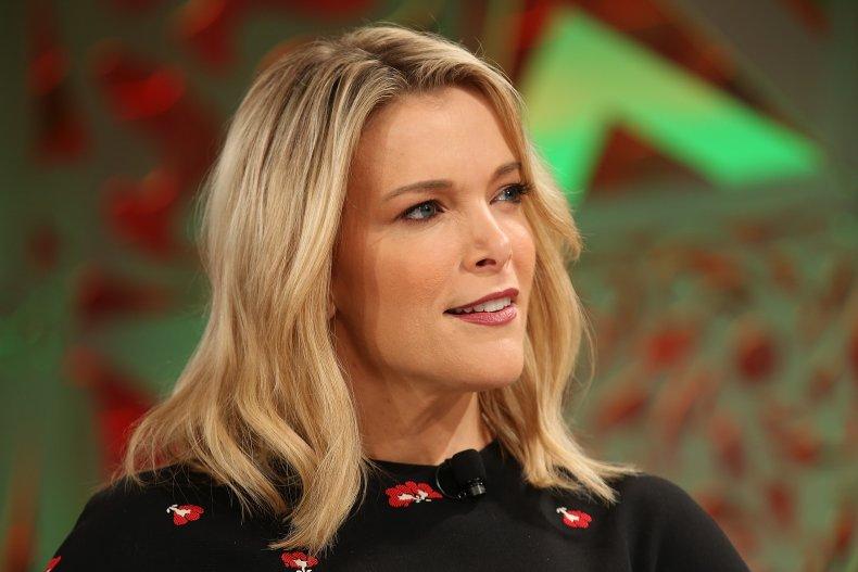 Megyn Kelly partly blames media for insurrgence