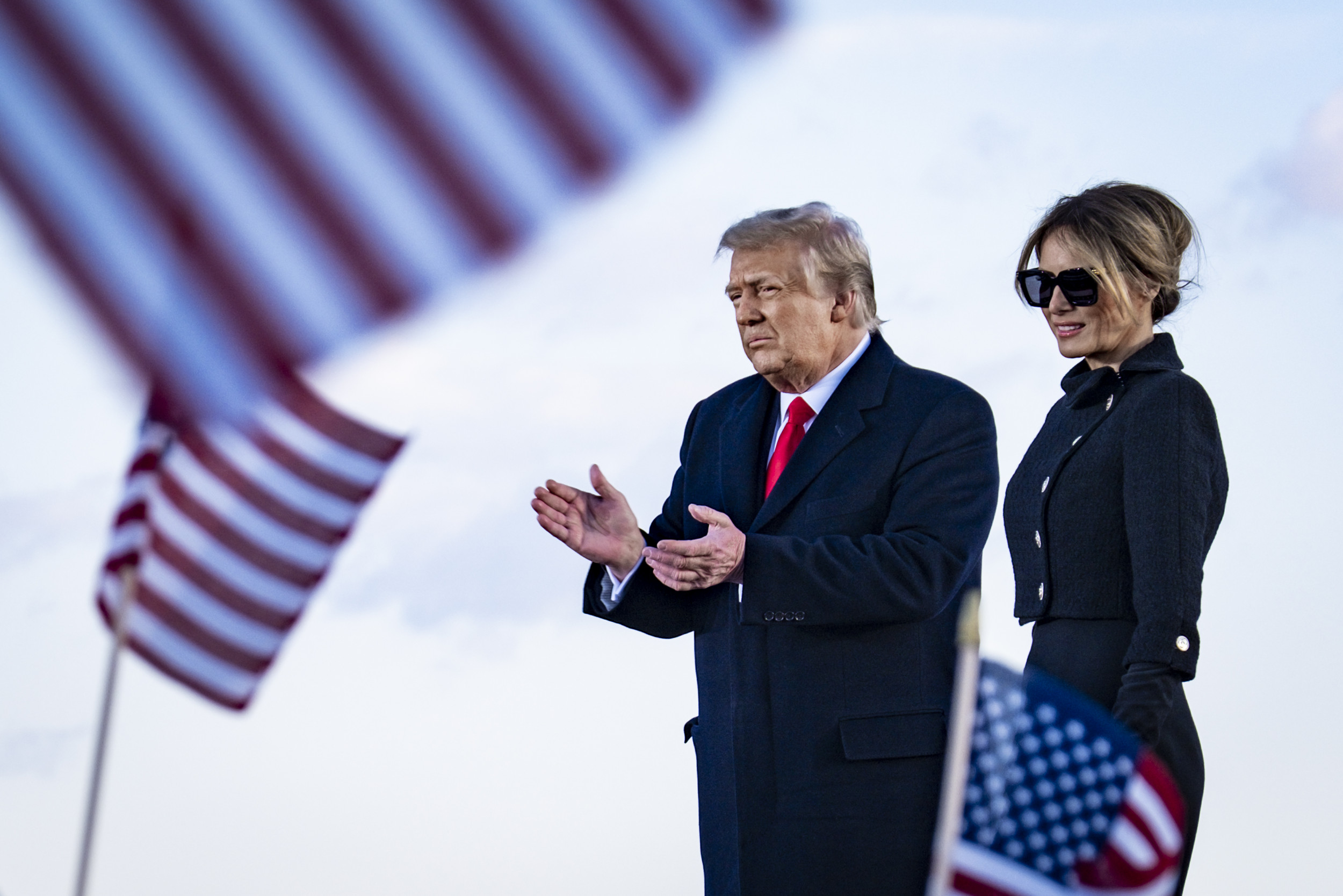 PATRIOT LION TEA Towel Patriot Party Republican Trump 1776