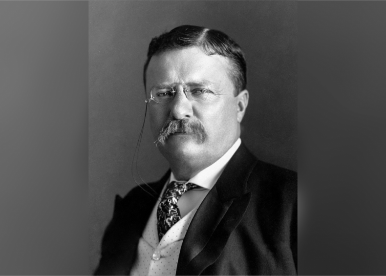 #46. Theodore Roosevelt
