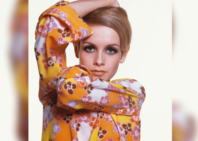 Twiggy is a new kind of model