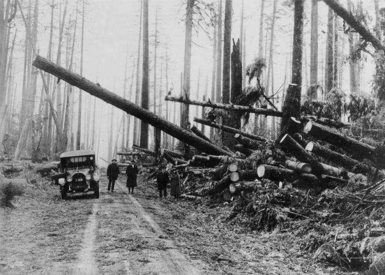 1921: The Great Olympic Blowdown