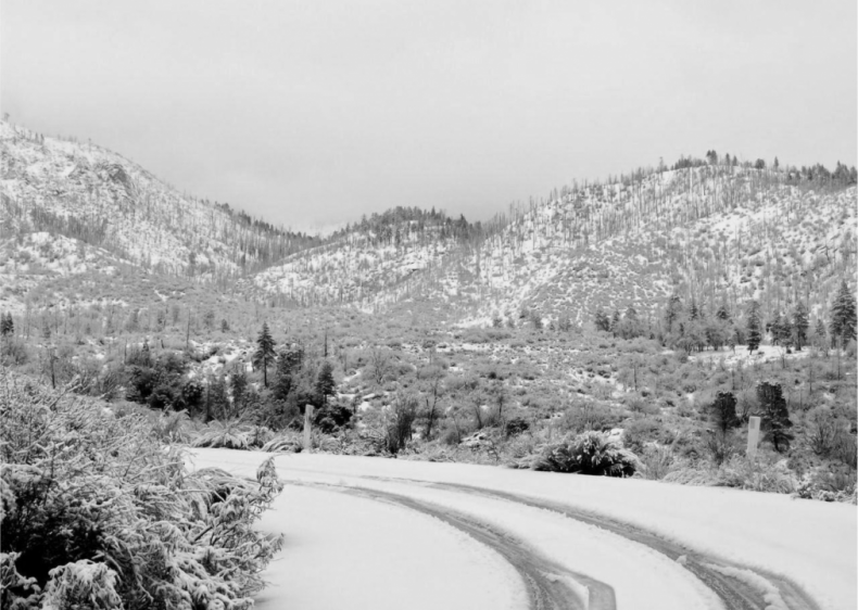 1959: Mount Shasta Snowstorm