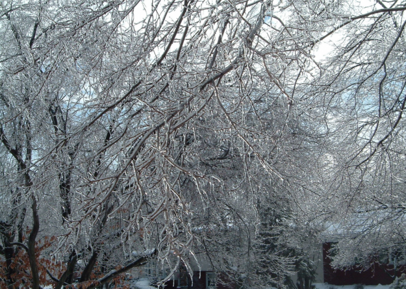 2005: A cluster of high-wind blizzards