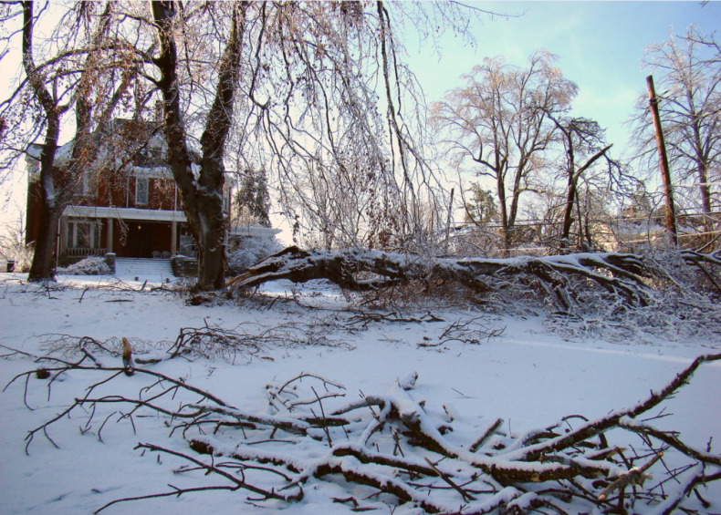 2009: January storms in the Midwest and South