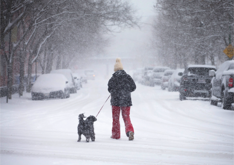 2015: A series of blizzards and cold spells